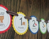 Brown Bear Brown Bear Banner: Just Born/0-12 month First Birthday Photo Picture Banner. First Birthday Banner. Picture Banner. Book