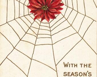Season's Hearty Good Wishes- 1910s Antique Postcard- Poinsettia Flower Caught in Spiderweb- Edwardian Christmas Decor- Paper Ephemera- Used