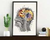 Flowery Brain , white art Print- A4 Wall art. Human anatomy  print - Chic Science prints wall art, Human anatomy and flowers art WP090