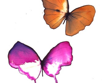"""butterfly duo orange, magenta pink and white 8 X 10"""" original watercolour painting"""