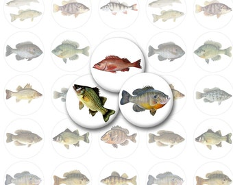 Small Fish Printable 1-Inch Circles / Bottlecap Images / Fishing Digital Collage / Trout, Salmon, Bass, Crappie, Catfish / Instant Download