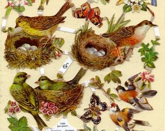 Bird SCRAP RELIEFS, Birds Scrap Reliefs, Bird Die Cuts, Die Cut Birds, Victorian Bird Illustrations, Nature Die Cuts, Paper Birds
