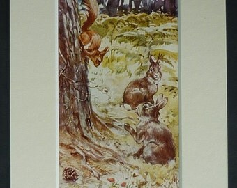 1920s Vintage HM Brock Print of a Red Squirrel and a Pair of Woodland Rabbits Beautiful countryside decor, natural history nursery decor