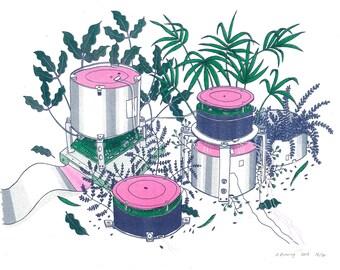 BioCD Fern Forest risograph art print