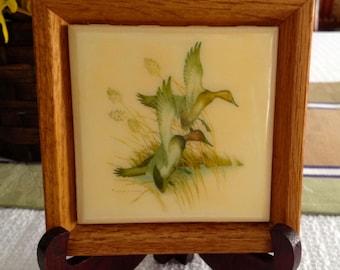 Canvasback framed duck tile, Charles Murphy print, canvasback ducks, framed tile, framed art tile, framed trivet