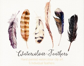 Watercolour Feathers /Hand painted watercolour clip art / Individual  PNG files