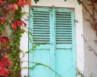 Closed green shutters and autumn leaves (France).