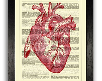 RED HEART Decorative Artwork Print, Anatomical Heart Poster, Anniversary Gift for Boyfriend, Anatomy Heart Illustration, Dictionary Artwork