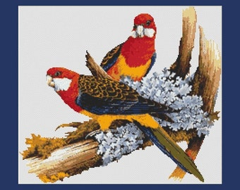 Colorful Parrot Birds Couple Counted Cross Stitch Pattern in PDF for Instant Download