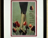 FRAMED ARTWORK. Tiptoe through the Tulips