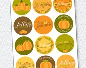 Hey Pumpkin Bridal Shower PRINTABLE Party Circles by Love The Day