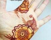 Persian Gold Henna Kit -  Mehndi, cool, teens, bridal, gift for her, girlfriend, college student, birthday, graduation