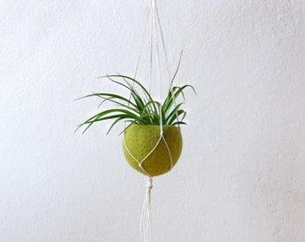 Macrame planter / macrame plant hanger / air plant holder / Succulent planter / Olive green Felt planter / CHOOSE YOUR COLOR