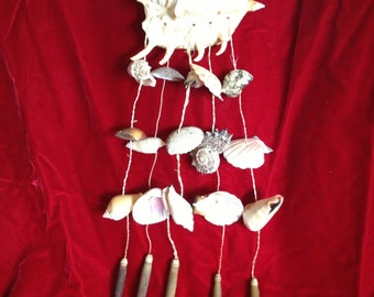 Sea Shell Wind Chime With Lambis Lambis Top