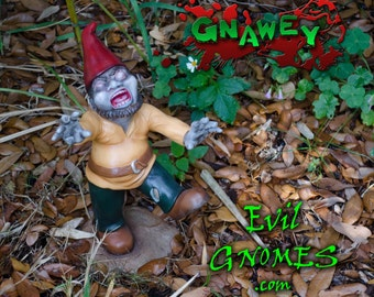 Evil Gnomes: Gnawey the zombie gnome