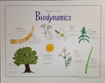 Biodynamics Treatments Poster, Poster Reprint of a Handdrawn Illustration