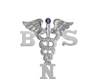 BSN Nursing Pins Silver | Graduation Pinning Ceremony
