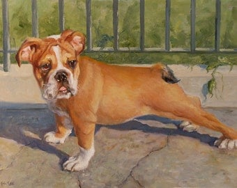 Pet Portrait, Oil Painting, Bulldog Portrait, Puppy, Fine Art