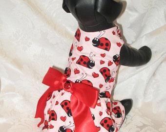Dog Ladybug Print Dress