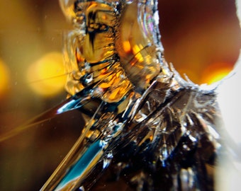 Macro glass photography (Three image series)