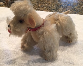 Vintage Steiff Snobby poodle 1950's