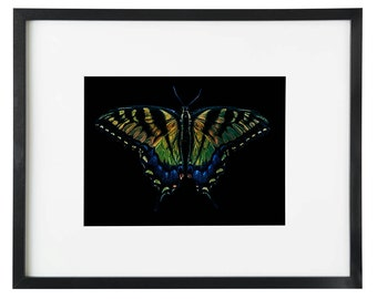 Butterfly on black 8x12 or 16x24 print