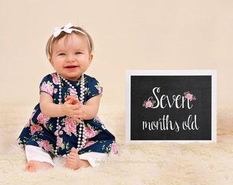 First Year Monthly Baby Chalkboard Photo Prop 8x10, Baby Monthly Photo Prop, month by month signs, Monthly Baby Girl Chalkboard, JPEG