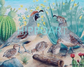 QUAIL FAMILY Southwest Greeting Card