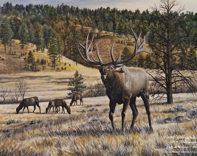 Elk Print Imperial Majesty Elk Art Elk Painting Elk Hunting Imperial Majesty Canvas Print Gift for Dad Black Hills Scenery Nicole Heitzman