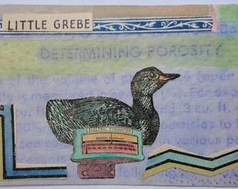 Original ACEO - Determining The Porosity Of The Little Grebe