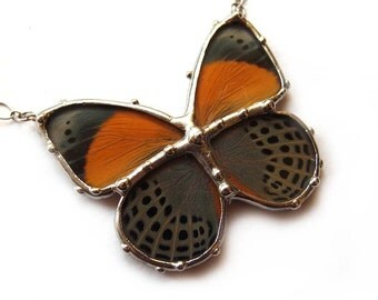 Real Butterfly Jewelry - Orange and Sage Little Butterfly - Fall Fashion