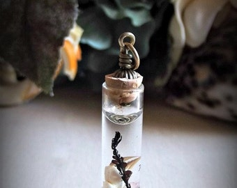 Tiny Claw Pendant