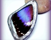 BLUE MORPHO with PURPLE Shimmer Real Butterfly Wing Necklace Two Sided
