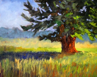 Landscape Oil Painting, Evergreen Tree, Original 11x14 on Canvas, Green, Blue, Gold, Yellow, Field, Wall Decor, Country Scene, Pine, Cedar