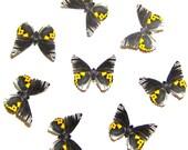 24 Black, White & Yellow Butterflies for DIY weddings,  butterfly baby shower, butterfly school kit, butterfly wall décor, stocking stuffers