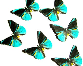 24 Teal, Black & Yellow Paper Butterflies for DIY weddings, baby showers, DIY butterfly school kits, butterfly wall décor, stocking stuffer