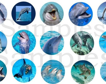 """1"""" Inch Dolphin Flatback Buttons, Pins or Magnets 12 Ct."""