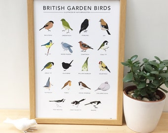 British Garden Birds print - wildlife wall art / nature illustrations / birdwatching chart / nature wall art / home gift / bird gift