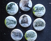 "Edwardian Big Cat Illustrations 1.25"" Magnets or Pinback Buttons - Set of 8"