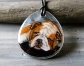Bulldog necklace- fused glass pendant