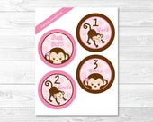 Cute Pink Monkey Monthly ...