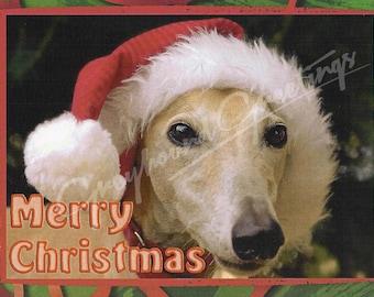 SueBero Greyhound Christmas Cards - Greyhound Santa - Set of 4