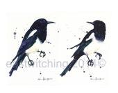 MAGPIE Prints, PAIR of 2 bird prints