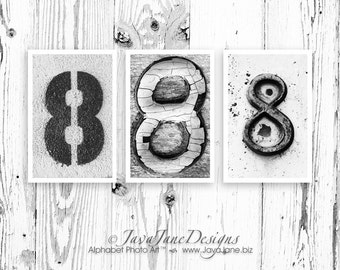 Number 8 EIGHT Photograph, Individual 4x6 Number Photo, Wedding Date Print (8)
