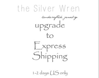 USA - Upgraded Shipping -Express mail- 1-2 days delivery after item is shipped