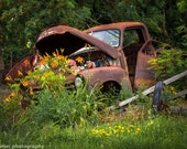 Rusty Truck Flower Bed, Photograph of a Charming Country Scene, Rustic Landscape, Abandoned Truck on the Roadside, Hope and Peace