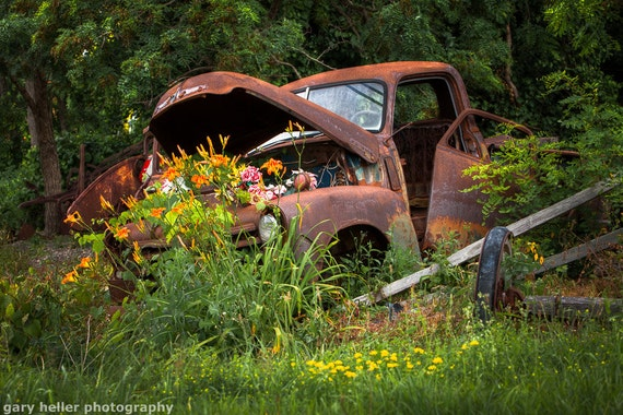 Rusty Truck Flower Bed Photograph Of A Charming Country