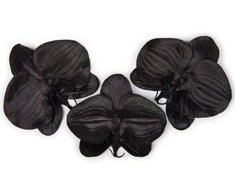 Set of three black Phalaenopsis Orchid Hair clip