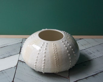 sea urchin vase