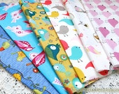S058 Fabric Scraps Bundle Set - Spring Color Blue Yellow Pink Rainbow Color Lovely Birds Collection (6PCS, 9.8x9.8 Inches)